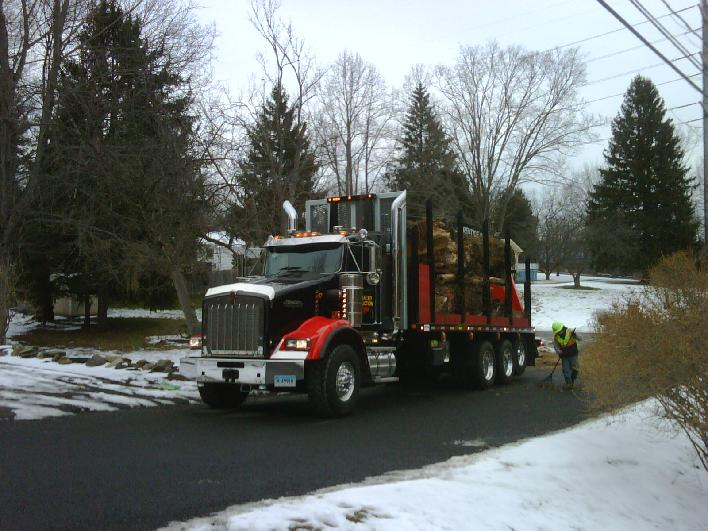 Truck | Tree Removal